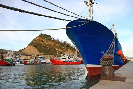 Industrial Refrigeration solutions for the fishery industry - Danfoss